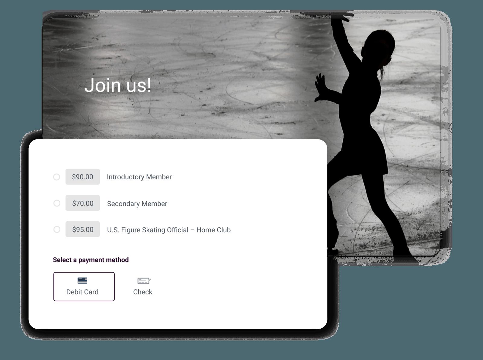 figure skating software summary